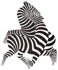 vassarely zebra